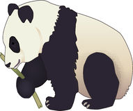 björnpanda stock illustrationer