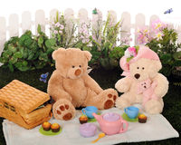 björnpicknicknalle Fotografering för Bildbyråer