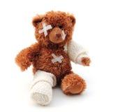 björnpoor Royaltyfria Foton