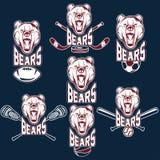 björnsportetiketter Royaltyfri Fotografi