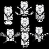 björnsportetiketter Royaltyfri Foto