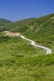 Bjelasica, Montenegro Royalty Free Stock Photography