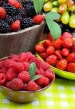 Björnbär, jordgubbe, hallon och druvor i en träbaske Arkivfoton