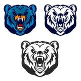 Björnmaskot Emblem av den sportlaget eller klubban, Arkivbild