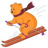 björnskiesnalle Arkivfoton