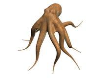 bläckfisk vektor illustrationer