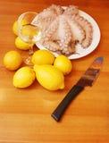 bläckfisk Royaltyfri Fotografi