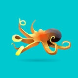 bläckfisk Arkivbilder