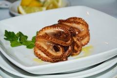 bläckfisk Fiskmat Royaltyfria Foton