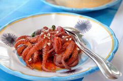 Bläckfisk i tomatsås Arkivfoton