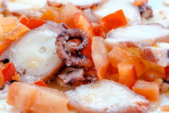 Bläckfisksallad med tomaten, röd peppar, löken, olivolja, vinäger och saltar Royaltyfri Fotografi