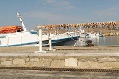 Bläckfiskuttorkning i solen mot havet på den Paros ön i Grekland Royaltyfria Foton