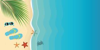 Bläddra misslyckanden och solglasögon på ett härliga Palm Beach med sjöstjärnan royaltyfri illustrationer