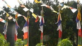 Bläddring av färgrika bönflaggor i solljus Rader med bönflaggor som hänger ovanför gröna träd i solljus, Nepal stock video