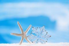 Blänka den glass snöflingan för jul med sjöstjärnan arkivbilder