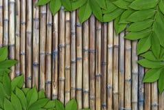 Blätter auf Bambushintergrund, Blattrahmen Lizenzfreie Stockfotos