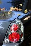 Blätter auf dem Auto Lizenzfreie Stockbilder