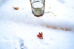 Blätter auf dem Schnee Stockfoto