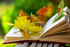 Blätter auf geöffnetem Buch. Lizenzfreie Stockfotos