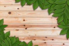 Blätter auf hölzernem Hintergrund mit gnarl, Blattrahmen Stockfotos