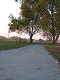 Blätter auf Wegsonnenuntergang-Park Herbst Lizenzfreie Stockfotografie