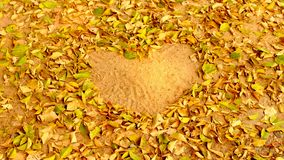 Blätter in der Liebesherzform stockfoto