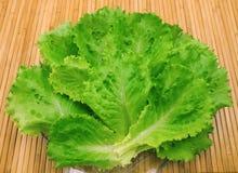 Blätter der neuen Kopfsalat- und Wassertropfen Lizenzfreie Stockfotografie