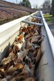 Blätter in der Regengosse. Stockbilder