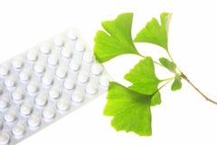 Blätter des Ginkgobaums und der überzogenen Tabletten Stockfotos