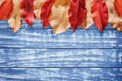 Blätter des Rotes, gelb auf einem hölzernen Hintergrund Stockfoto