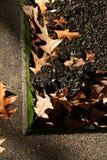 Blätter, die in einer Ecke stillstehen Stockfoto