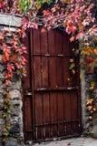 Blätter einer sehr alte Tür herum stockbilder