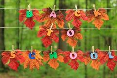 Blätter, Herbst und Schule. Lizenzfreies Stockbild