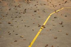 Blätter im Boden Lizenzfreie Stockfotos