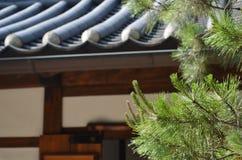 Blätter mit traditionellem koreanischem Gebäude-Hintergrund Lizenzfreies Stockfoto
