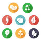 Blätter, Obst und Gemüse Ikonen Flache Art Stockfotografie
