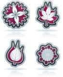 Blätter und Blumen vektor abbildung