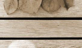 Blätter und Bretterbodenhintergrund Lizenzfreies Stockbild