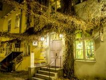 Blätter und Haus der getrockneten Traube lizenzfreies stockbild