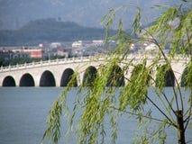 Blätter, Wasser und Brücke stockbild