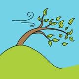 Blätter weggeblasener Baum an einem windigen Tag stock abbildung
