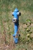 Blå aboveground vattenpost Royaltyfria Foton