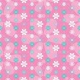 Blå bakgrund för för rosa färger och vita blommor Royaltyfri Bild