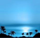 Blå bakgrund med havet och palmträd. Arkivbild
