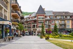 Blå bergby i sommar, Collingwood, Kanada Arkivfoto