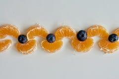 Blå blåbär och mandarinekedja Royaltyfria Bilder