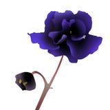 blå blomma royaltyfri illustrationer