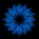 blå blomma för abstrakt bakgrundsblack Royaltyfri Foto