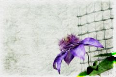 Blå blomma på en vit bakgrund med ett grönt galler royaltyfri illustrationer