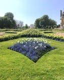 Blå blommapatron i trädgårdarna royaltyfri bild